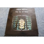 CHRIS SQUIRE - FISH OUT OF WATER LP - Nr MINT A2/B2 UK  YES PROG