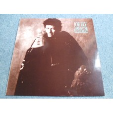 JOE ELY - LORD OF THE HIGHWAY LP - Nr MINT A2/B2 UK COUNTRY ROCK