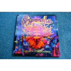 SHPONGLE - MUSEUM OF CONSCIOUSNESS 2LP - Nr MINT ELECTRONICA AMBIENT